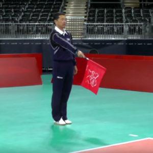 Juez de Línea de Voleibol
