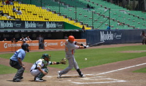 Partido de los Pericos de Puebla, pertenecientes a la Liga Mexicana de Béisbol