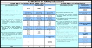 CAMPEONATOS DEL MUNDO; CONDICIONES & CATEGORÍAS